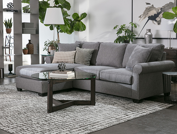 transitional Living room with Francis sofa
