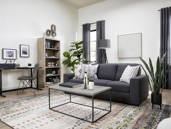 modern Living Room with Lucy Dark Grey Sofa