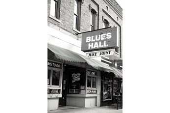 Picture-24X36 Got The Blues B Karyn Millet