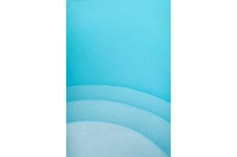 Picture-24X36 Blue Steps By Karyn Millet