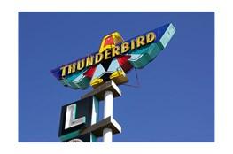 Picture-Thunderbird By Matthew Ehrmann