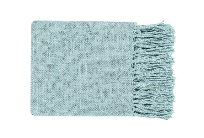 Accent Throw-Delco Aqua - 360
