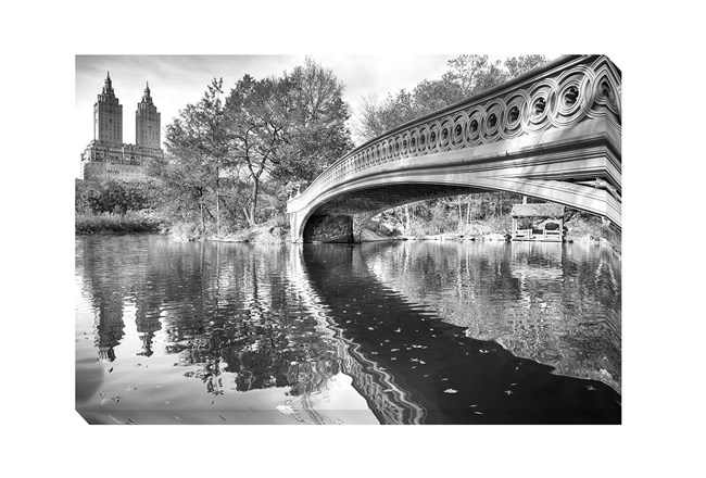 Picture-Central Park Bridge - 360