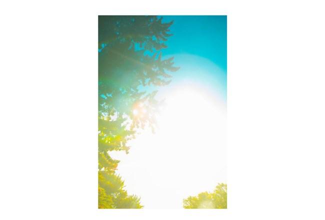 Picture-24X36 Vivid Dream By Karyn Millet - 360