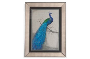 Picture-Mirror Framed Peacock I