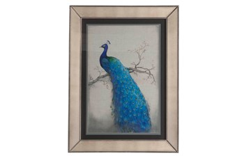 Picture-Mirror Framed Peacock II