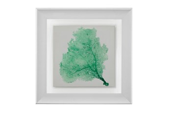 Picture-Sea Fan Emerald