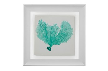 Picture-Sea Fan Turquoise