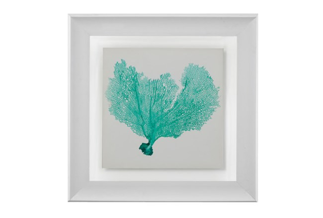 Picture-Sea Fan Turquoise - 360