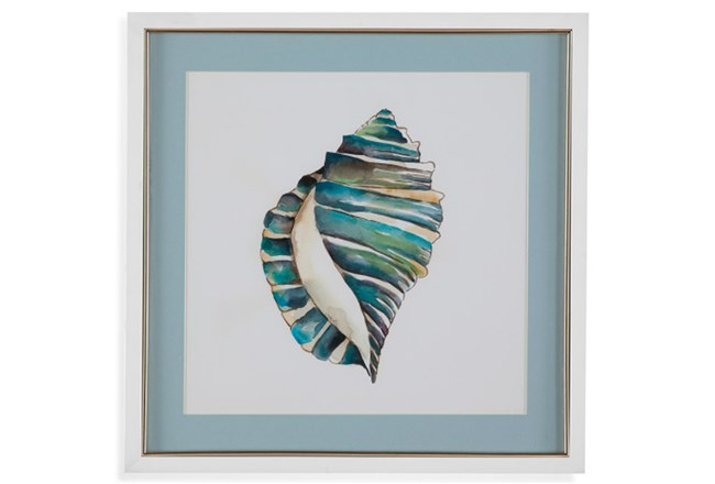 Picture-Aqua Shell I - 360