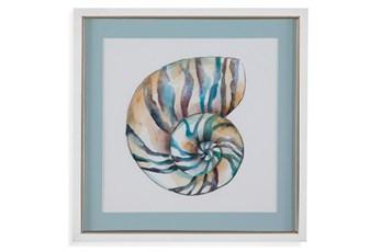 Picture-Aqua Shell II