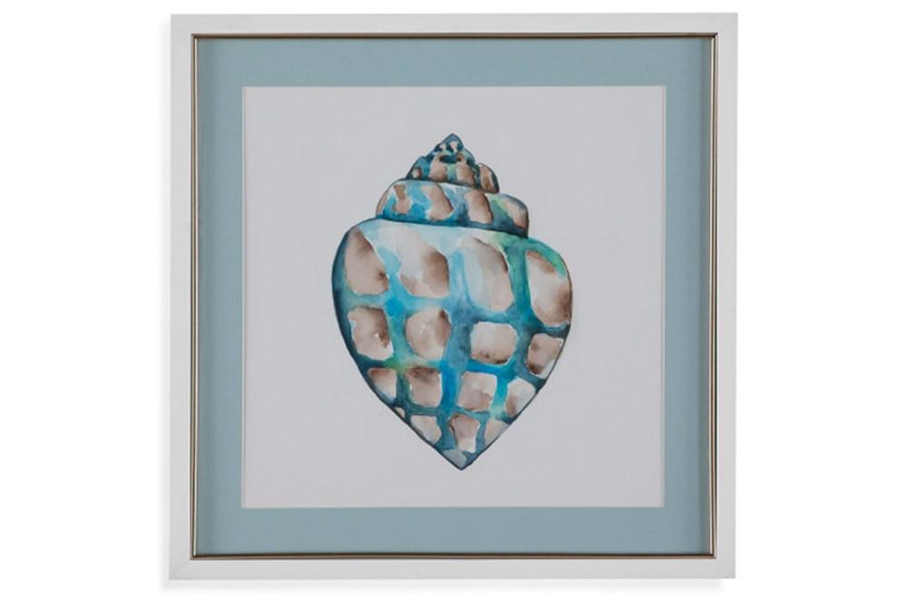 Picture-Aqua Shell IV