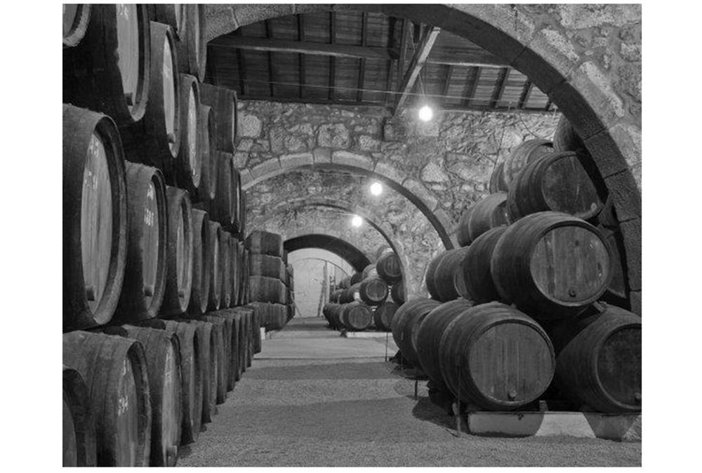 Picture-Wine Cellar