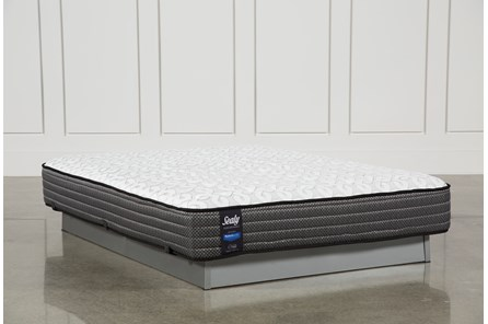 Butterfield Cushion Firm Queen Mattress