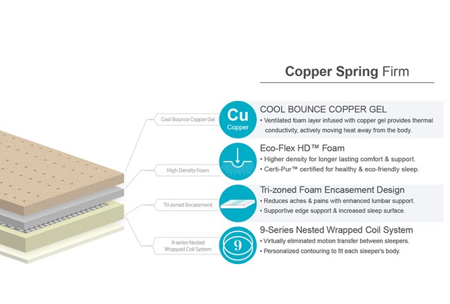 Copper Springs Firm Queen Mattress W/Low Profile Foundation - 360