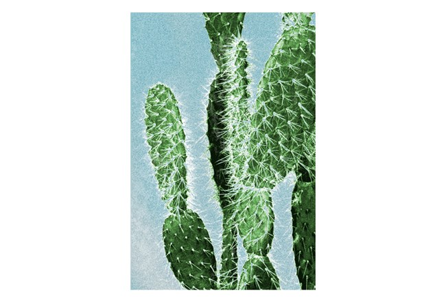 Picture-24X36 Prickly Pear Cactus II - 360