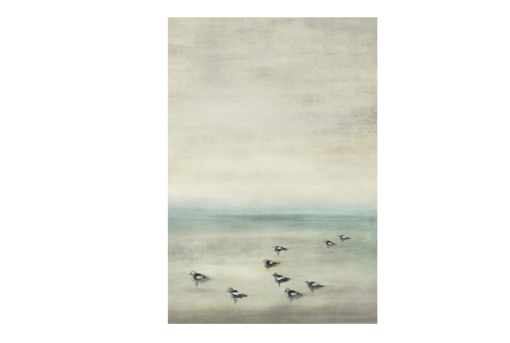 Picture-Birds On The Beach 30X44