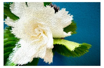 Picture-Pixel Bloom 54X36