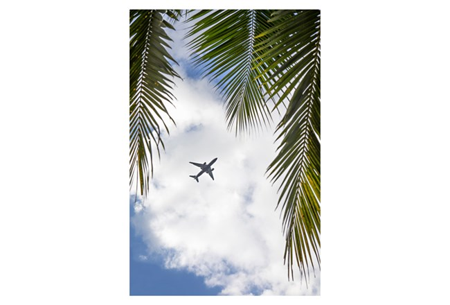 Picture-Fly Over 24X36 - 360