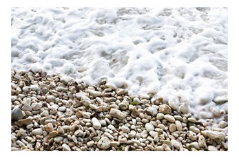 Picture-Rocky Beach 36X24