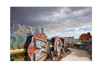 Picture-45X30 Neon Boneyard
