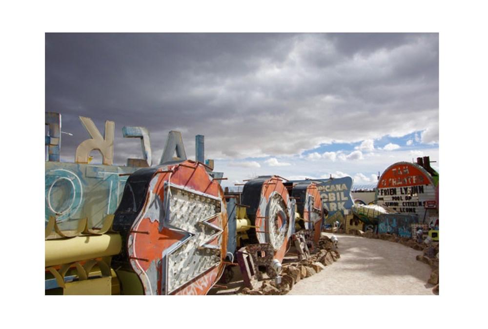 Picture-54X36 Neon Boneyard