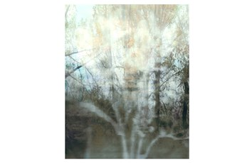 Picture-24X30 Peering Through The Window II