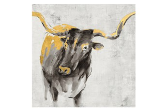 Picture-36X36 A Cow In Golden Rays