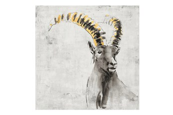 Picture-36X36 A Sheep In Golden Rays