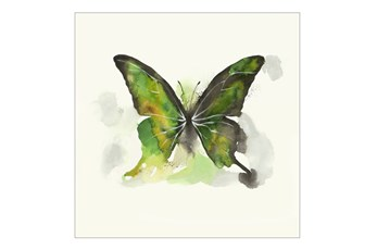 Picture-24X24 Butterfly Dance I