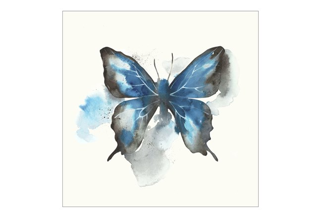 Picture-24X24 Butterfly Dance III - 360