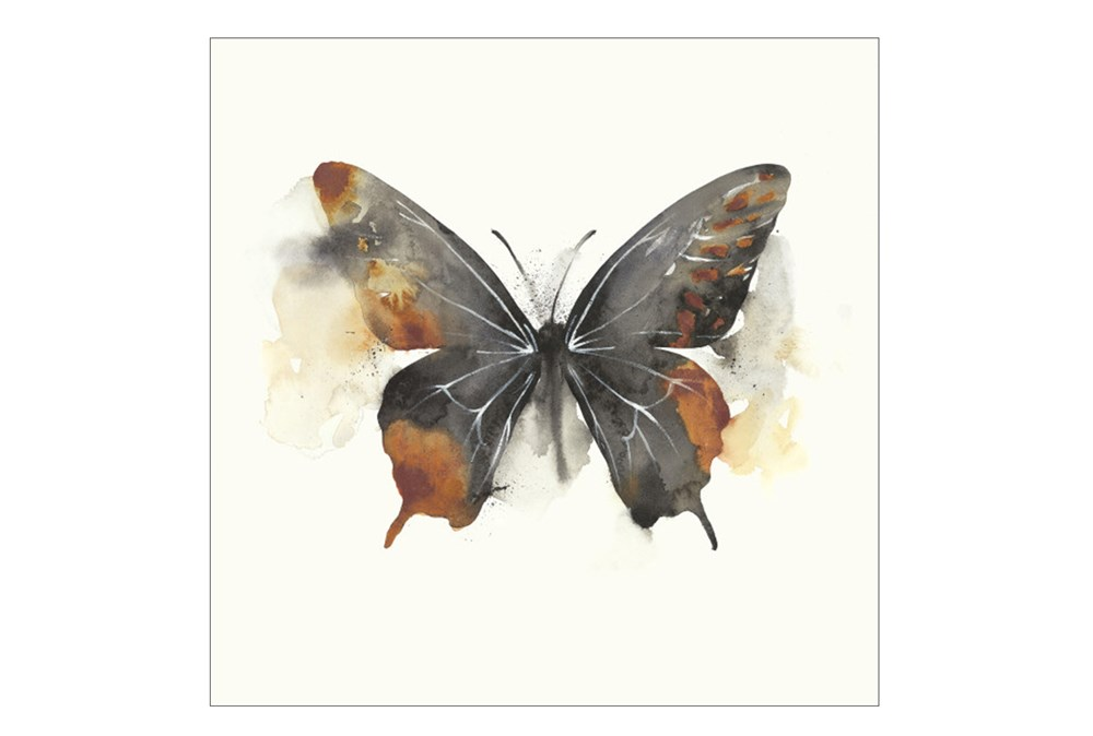 Picture-30X30 Butterfly Dance IV