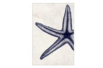 Picture-30X45 Indigo Starfish