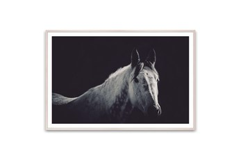Picture-Horse In The Shadows 60X40