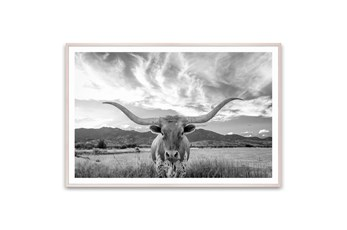 Picture-Texas Longhorn Steer 60X40