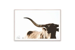 Picture-Rustic Texas Longhorn 60X40