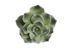 8 Inch Green Succulent Wall Decor